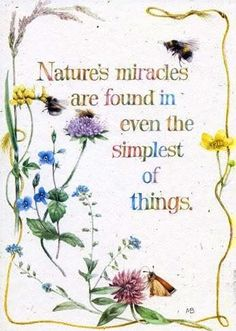 Nature's miracles