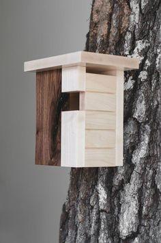 Why Build a Bird Aviary? Decorative Bird Houses, Bird Houses Painted, Bird Houses Diy, Wood Bird Feeder, Bird House Feeder, Bird Feeders, Contemporary Birdhouses, Modern Birdhouses, Bird House Plans