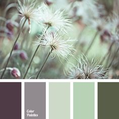 Color Palette #3002