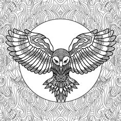 Birds And Fish Butterfly Coloring Pages On Behance
