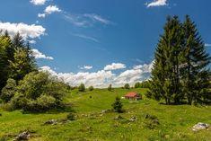 Randonnée Jura : Le Crêt de la Vigoureuse by Les carnets de voyage de Charlotte et Nicolas   Hautes-Combes   Jura, France   #JuraTourisme