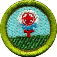 Pottery Merit Badge for Boy Scouts (Shows Requirements) | Girl ...