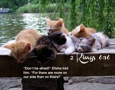 """2 Kings 6:16 """"Don't be afraid!"""" Elisha told him. """"For there are more on our side than on theirs!"""""""