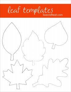 Lots of fall/leaf craft ideas here, including these printable templates. Great for coloring pages or other leaf crafts.