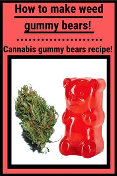 Some of the popular cannabis edibles out there are weed gummy bears. This is the best weed gummy bear recipe and one of the easiest weed gummy bear recipes Weed Recipes, Marijuana Recipes, Salve Recipes, Making Gummy Bears, Homemade Gummy Bears, Marijuana Facts, Medical Marijuana, Marijuana Butter, Weed Facts