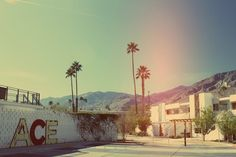 ACE Hotel Palm Springs.