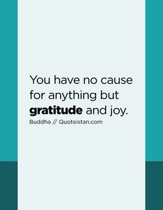 You have no cause for anything but #gratitude and joy. http://www.quoteistan.com/2017/01/you-have-no-cause-for-anything-but.html