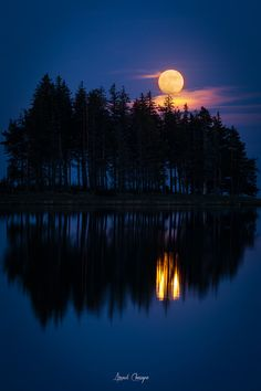 """drxgonfly: """"Moonrise (by Arnaud Chassagne) """""""