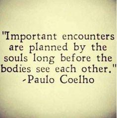 Important encounters are planned by the souls long before the bodies see each other - Paulo Coelho