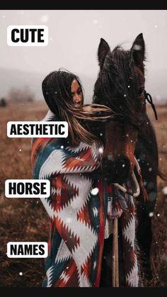 Cute Animal Names, Cute Puppy Names, Cute Names, Cute Little Animals, Cute Funny Animals, Cute Horses, Pretty Horses, Horse Love, Beautiful Horses