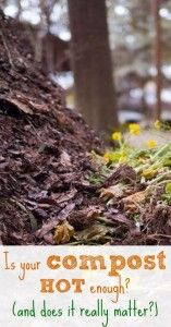 Is Your Compost Hot Enough and Why It Matters | http://thehomesteadsurvival.com/compost-hot-matters/