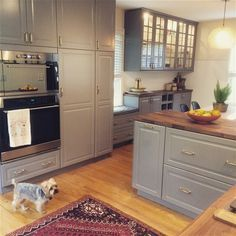 Check out My Kitchen on IKEA Share Space. Bodbyn Grey SEKTION cabinets, DOMSJO farmhouse sink, wood countertops, open shelving, matte white subway tile, shell chair, persian rug.