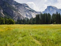 Tips for where to go in Yosemite