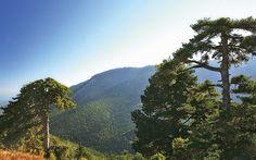Alpine Corinthia Stops - Greece Is Greece, Destinations, Island, Mountains, Fall, Nature, Travel, Block Island, Autumn