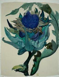 sarah graham botanical drawings