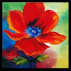 Schilderij Rode Bloem 5524