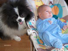 Great babysitter