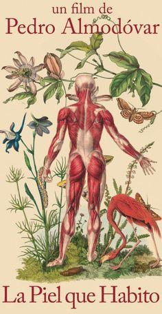 Juan Gatti, La piel que Habito, Ciencias Naturales, S/T, Collage s/ lienzo, 122 x 75,5cm, 2011 ©