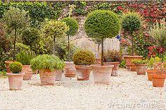 Terrace decorated with mediterranean flowerpots