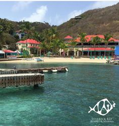 Get in touch with nature! Discover and explore the many wonders Virgin Gorda has to offer. #LeverickBayResort #BVI #Caribbean #IslanfLife