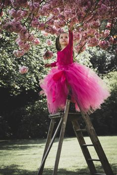 © Brigitte Feijen - Beautiful pink Princess Jeyceley She loves the flowers Pink Princess, Us Images, Your Image, Ph, The Selection, Love Her, Tulle, Flowers, Beautiful