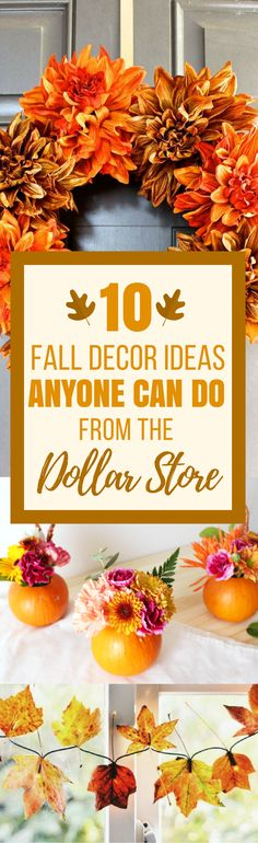 These 10 Dollar Store Fall Decor Ideas are THE BEST! I'm so glad I found these GREAT dollar store decor ideas! Now I have some great ways to decorate my home on a budget! Definitely pinning!