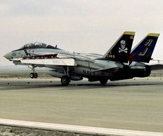 Tomcat F14, Grumman Aircraft, Black Beast, Airplane Fighter, Planet Of The Apes, Jolly Roger, Aircraft Design, Fun Shots, What Is Tumblr