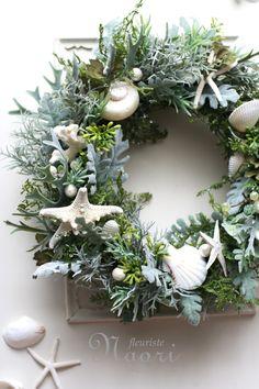 Wreath of Sea Forest 海の森のリース 貝殻 ヒトデ 珊瑚 shell starfish