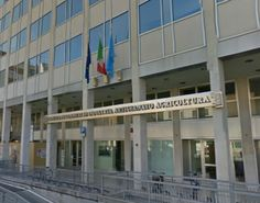 Udine, voucher per iniziative di internazionalizzazione