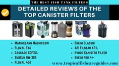 Best Fish Tank Filter- Detailed reviews of the 10 best canister filters