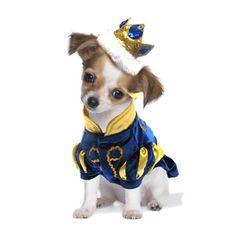 Prince Charming Dog Costume at BaxterBoo