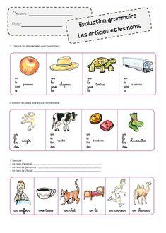 Faire de la grammaire au CP - Evaluations