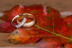 great photo of rings for fall wedding