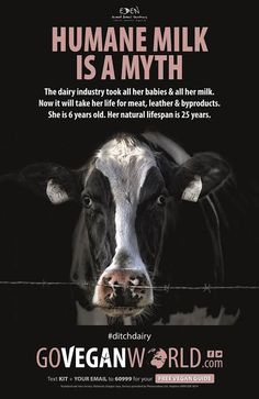 """Go Vegan World has accused the National Farmers' Union of """"entirely missing the point"""" in its recent criticism of the campaign which has been appearing across the UK and Ireland on billboards, taxis, motorways and at underground stations as well as full page adverts in national newspapers. The c"""