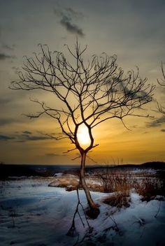 """♠ A paz interior é o teu maior tesouro, não deixe que a ansiedade venha rouba-la, nem permita que alguém a destrua seja com palavras ou atitudes. Olhe para """"você"""" e siga em frente!"""