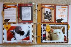 Romy Veul created these fun pages documenting her furry friends using the new Happy Tails collection. Love those sweet kitties! #BoBunny, @Romy Veul