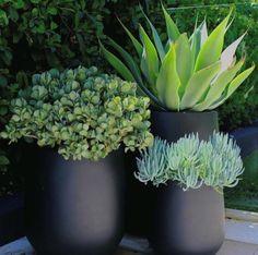 Garden Design Ideas On A Budget, Modern Garden Design, Garden Ideas, Patio Design, Balcony Design, Garden Projects, Garden Inspiration, Backyard Designs, Courtyard Design