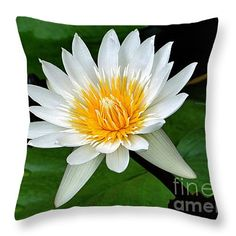 "Hawaiian White Water Lily 14"" x 14"" Throw Pillow by Sue Melvin.  Our throw pillows are made from 100% cotton fabric and add a stylish statement to any room.  Pillows are available in sizes from 14"" x 14"" up to 26"" x 26"".  Each pillow is printed on both sides (same image) and includes a concealed zipper and removable insert (if selected) for easy cleaning."