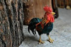 Needle felted Rooster