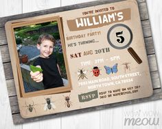 Bug Invitations Photo Insect Catcher Invite Birthday by wowwowmeow