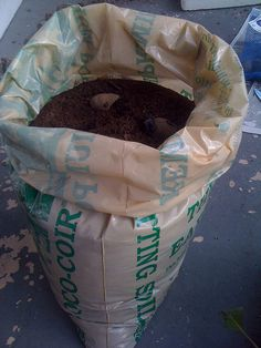 Grow Potatoes in a bag of Potting Soil...  Click on image for detailed instruction