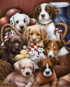 Puppies II by Jenny Newland