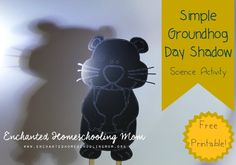 Find out how and why shadows are important to Groundhog Day with this free science activity from Enchanted Homeschooling Mom Preschool Groundhog, Groundhog Day Activities, Science Activities For Kids, Kindergarten Science, Holiday Activities, Holiday Crafts, Science Fun, Teaching Science, Stem Activities