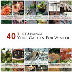 40 Tips to prepare your garden for winter. See what experienced gardeners do! Garden Mulch, Lawn And Garden, Garden Landscaping, Garden Projects, Garden Tools, Garden Art, Garden Ideas, Organic Gardening, Gardening Tips