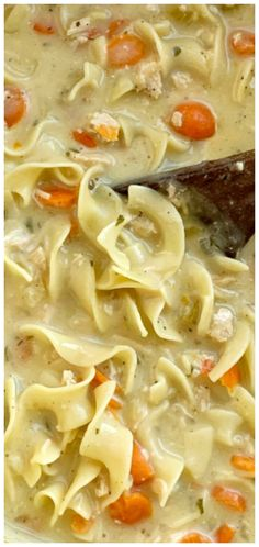 Creamy Chicken Noodle Soup is a creamy version of the classic comfort food. Chicken, carrots, onion, egg noodles in a creamy seasoned chicken broth base. Cream Cheese Chicken, Cream Of Chicken Soup, Creamy Chicken, Dill Pickle Soup, Soup Recipes, Chicken Recipes, Cream Of Celery Soup, Chicken Noodle Soup, Chicken Seasoning