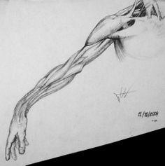 Human body. Art form. Organic shapes.
