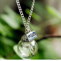 """Glass with dampylion necklace New retail. 18"""" chain. Pendant 1x1. Have you ever made a wish on these whimsical dandelion seeds?  A special necklace to remember that special time. Silver tone. Jewelry Necklaces"""