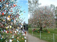 Easter Egg tree in Germany