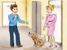 Become a Professional Dog Walker Step 1.jpg