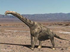 How Do Paleontologists Classify Dinosaurs?: Brachiosaurus, the prototypical example of a saurischian dinosaur (Nobu Tamura)